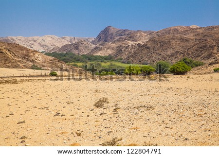 Oasis in the desert, is it an optical illusion? Desolation and beauty of Damaraland in Namibia.