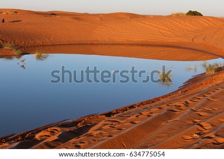 Oasis in the Sahara #634775054