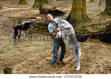 OATLAND WILDLIFE CENTER, SAVANNAH, GEORGIA - FEB 15, 2008:  Kevin Morley with two gray wolves that he raised at the Oatland Wildlife Center in Savannah, Georgia on February 15, 2008.