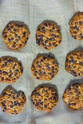 oats cookies with hazelnuts and chocolate chips on a grey cloth