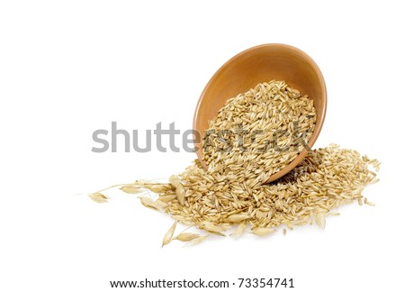 Oats grains and spikes in the bowl isolated on a white background.
