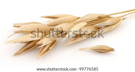 Oats on a white background - stock photo
