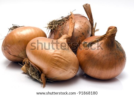 Object on white food - bulb onion - stock photo
