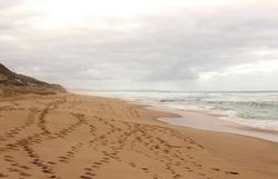 Ocean beach at cloudy day, Southern Ocean, Mornington Peninsula, Victoria, Australia