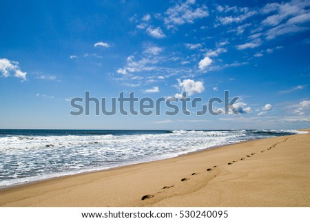 Ocean beach with footprints on sand on background of blue sky #530240095