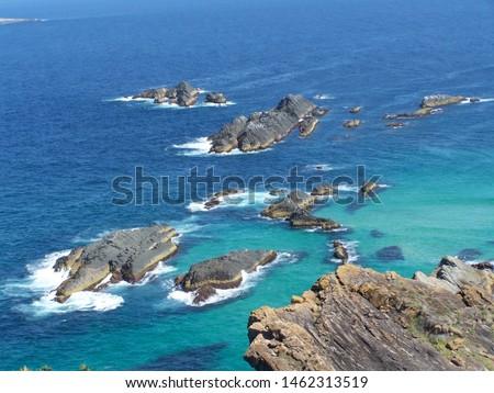 Ocean shoreline rocks look like alligators attacking