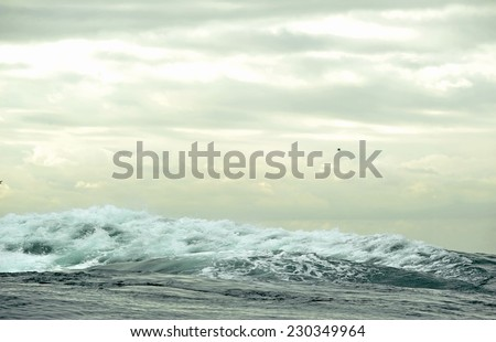 Ocean storm. Wave on the surface of the ocean. Wave breaks on a shallow bank
