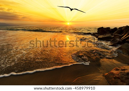 Ocean sunset bird silhouette is a single bird flying over the ocean water as sun rays burst forth from the sun in a vivid surreal colorful scenic seascape.