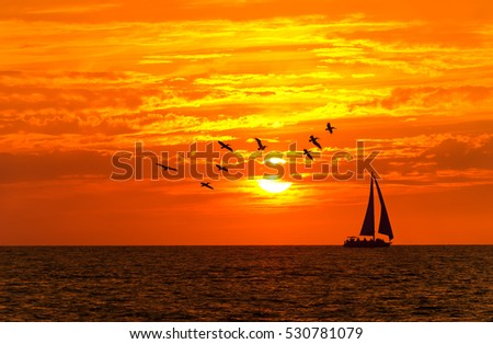 Ocean sunset sailboat birds is a sailboat sailing along the ocean water at sunset with a large flock of silhouette birds following close behind.