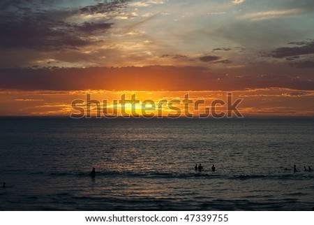 Ocean sunset view with swimmer silhouettes