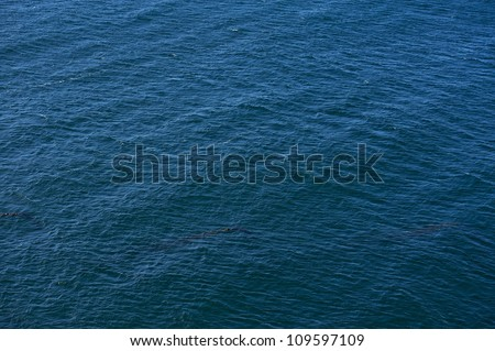 Ocean Surface Background - Dark Blue Ocean Surface. Nature Photo Backgrounds Collection.