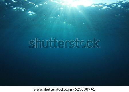 Ocean underwater #623838941