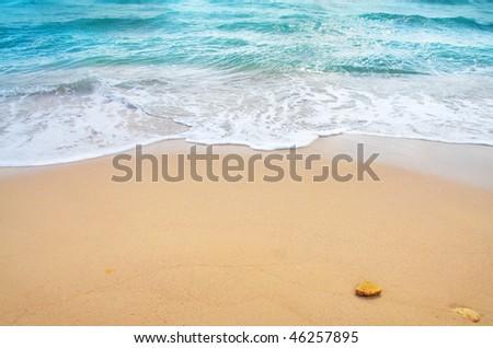 ocean wave and tropical beach