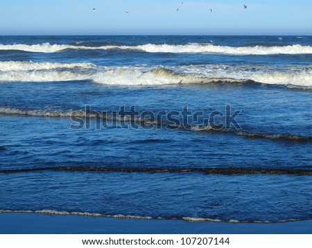 Ocean Waves Breaking on Shore on a Clear, Sunny Day