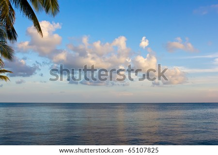 ocean with clouds and palms in Florida Keys