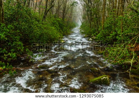 Oconaluftee River in Great Smoky Mountains National Park in North Carolina, United States #1293075085