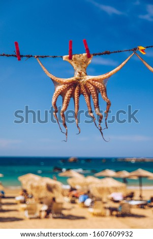 Octopus drying in the sun, Crete, Greece, Europe. Octopus drying in Crete, Greece. An octopus drying on a rope outside a tavern in Crete, Greece. Octopus is a very popular dish in Greece.