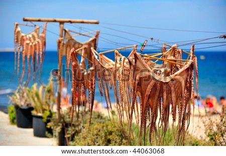 octopus hanging to dry on mediterranean beach