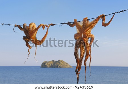 Octopus hanging up to dry in the sunshine in the Greek islands
