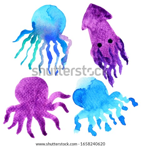 octopus squid cartoon watercolor painting illustration design hand drawing art