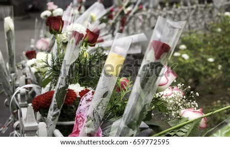 Offer flowers for victims of terrorism, violence and symbol peace #659772595