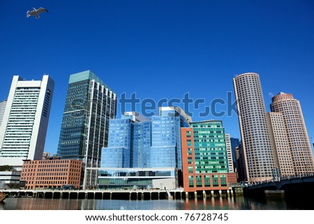 Office buildings and flying gull in Boston city, USA