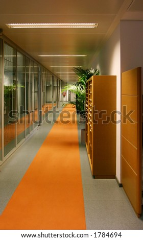 Office corridor with orange carpet and some trees.