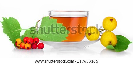 office Cup transparent herbal tea of hawthorn and wild pear Crataegus tea with herbs and berries of the hawthorn with bright green leaves in clear plastic Cup with saucer isolated on white background