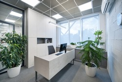 Office room with plants