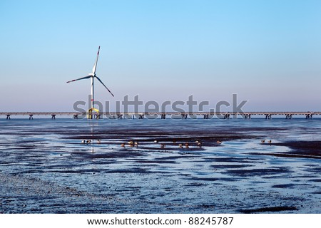 Offshore wind turbine with ducks in the front and copy space.