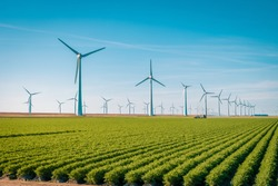 Offshore Windmill farm in the ocean  Westermeerwind park , windmills isolated on a beautiful bright day Netherlands Flevoland Noordoostpolder