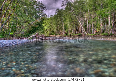 Ohanapecosh River, just outside the Grove of the Patriarchs, in Mount Rainier National Park. The river is glacial meltwater.