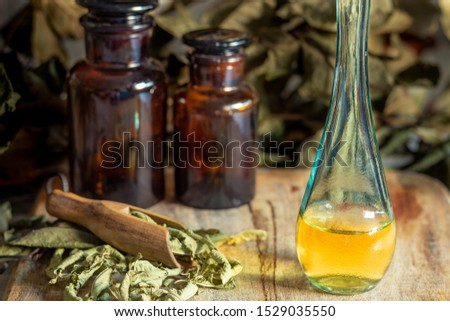 Oil and extract of herbs and aromatic medicinal plants that take