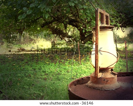 oil lantern sitting on drum under mulberry tree
