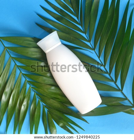 Oil palm nutrition. Bottle shampoo on palm leaf with exotic plant blue background top view. Damaged hair sulfate and paraben free shampoo. Shampoo important hair natural moisture. Power of palm tree.