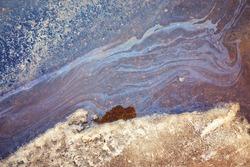 Oil slick looks like a bird on the asphalt road background. Oil stain on Asphalt, color Gasoline fuel spots on Asphalt Road as Texture or Background