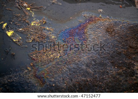 Oil Slick on the road