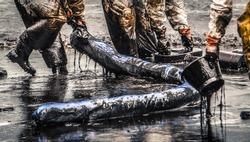 oil spill cleanup at koh samet thailand