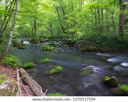 Oirase Stream, Oirase Stream (Oirase Keiryū) is a picturesque mountain stream in Aomori Prefecture that is one of Japan's most famous and popular autumn colors destinations. Janpan  Aomori ken