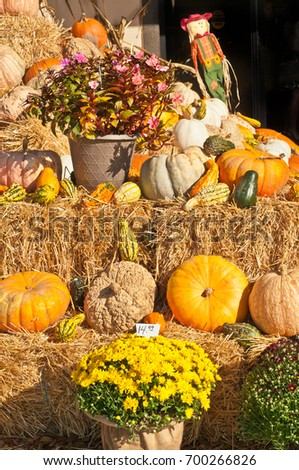Oktoberfest display of autumn decorations of pumpkins, flowers,  #700266826