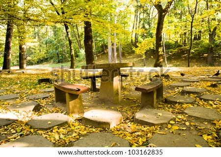old a chair and benches (are made of a stone and a tree), located in park. autumn.