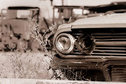 Old abandoned cars in the junk yard