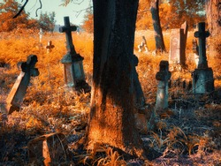 Old abandoned cemetery on a sunny autumn morning. Golden autumn in the cemetery. Monuments of Christianity. Stone crosses, ruins and graves.