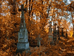 Old abandoned cemetery with crosses on a sunny autumn day. Golden colors on the trees in the cemetery.