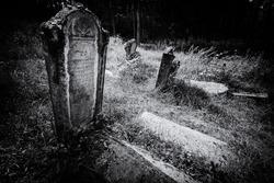Old abandoned Jewish cemetery above the village Dobra voda, Slovakia. (BW illustration)