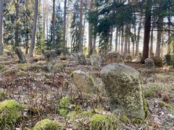 Old abandoned jewish cemetery in the forest near Salakas, Lithuania
