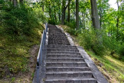 Old abandoned stairway in the park will be going green alive
