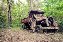 Old abandoned truck in the jungle, Tayrona National Park, Colombia