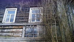 Old abandoned wooden house with two windows and dry tree branches in disrepair from fairy tale. Russia travel concept. Dirty broken building background. Wood material. Historical architecture. Restore