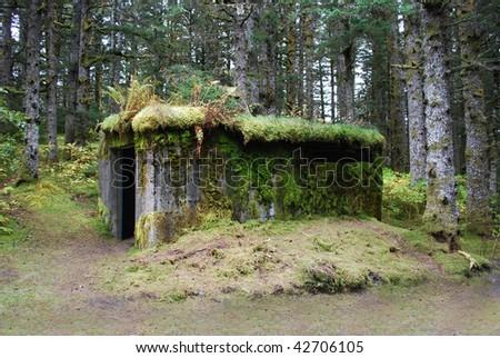 Old ammunition bunker in forest on Kodiak Island, Alaska
